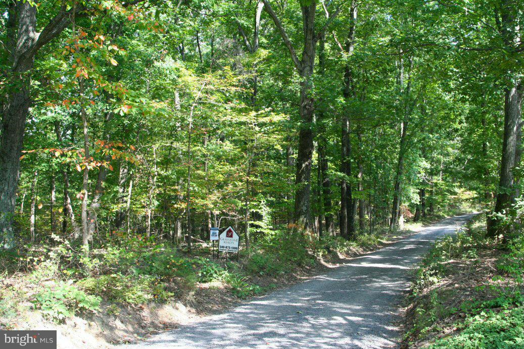 Additional photo for property listing at Cook Mtn Dr  Brightwood, Virginia 22715 United States