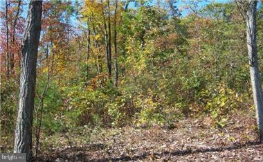 Additional photo for property listing at Deer Run Rd  Berkeley Springs, West Virginia 25411 United States