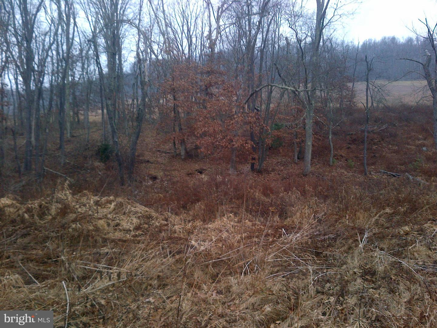 Additional photo for property listing at Old Crellin Rd NW  Oakland, Maryland 21550 United States