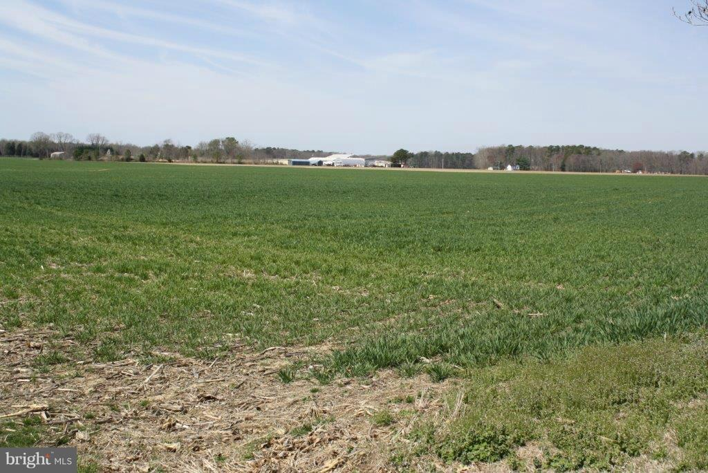 Land for Sale at Kingston Rd Easton, Maryland 21601 United States