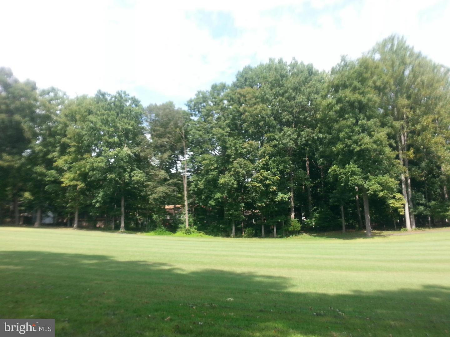 Additional photo for property listing at 202 Sand Trap Ln  Locust Grove, Virginia 22508 United States