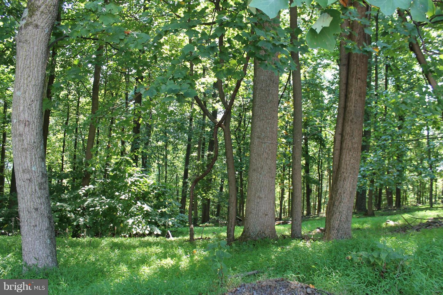Land for Sale at Adelaide Cir Harpers Ferry, West Virginia 25425 United States