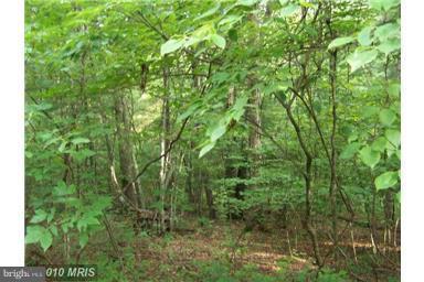 Land for Sale at Bitternut Ln Basye, Virginia 22810 United States