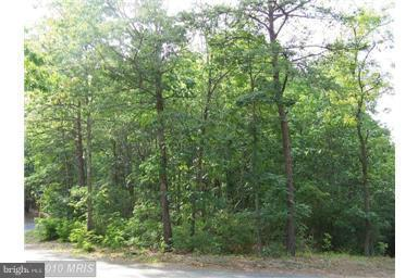 Land for Sale at Locust Ln Basye, Virginia 22810 United States