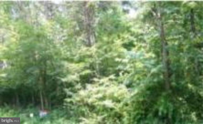 Land for Sale at 135 Codjus Dr Rising Sun, Maryland 21911 United States