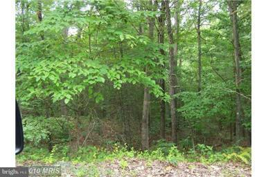 Land for Sale at Anderson Rd Basye, Virginia 22810 United States