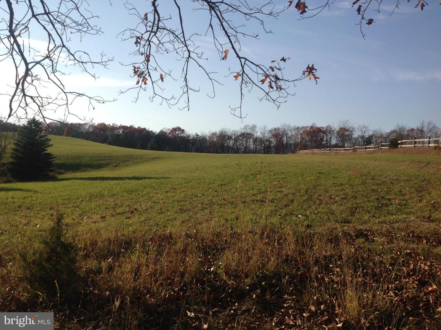 Farm for Sale at 2957 Ed Welch Rd Burlington, West Virginia 26710 United States