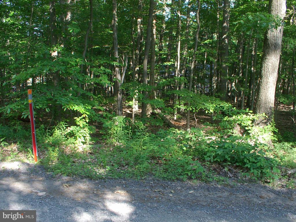 Additional photo for property listing at Racoon Dr Lots 4 And 6  Winchester, Virginia 22602 United States