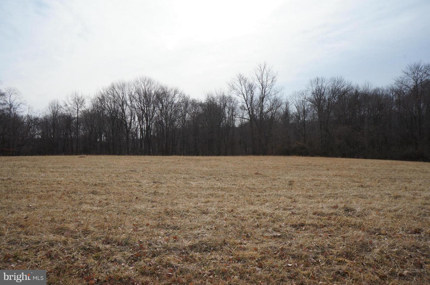 Additional photo for property listing at Airy Hill Rd  Chestertown, Maryland 21620 United States