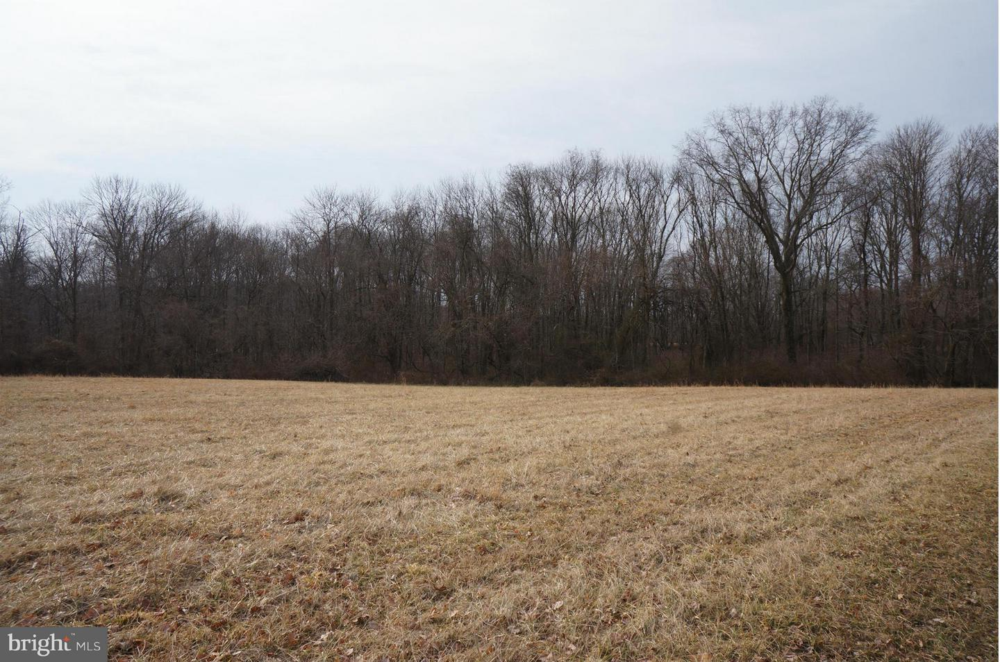 Land for Sale at Airy Hill Rd Chestertown, Maryland 21620 United States