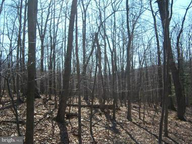 Land for Sale at Rosebud Lane Great Cacapon, West Virginia 25422 United States