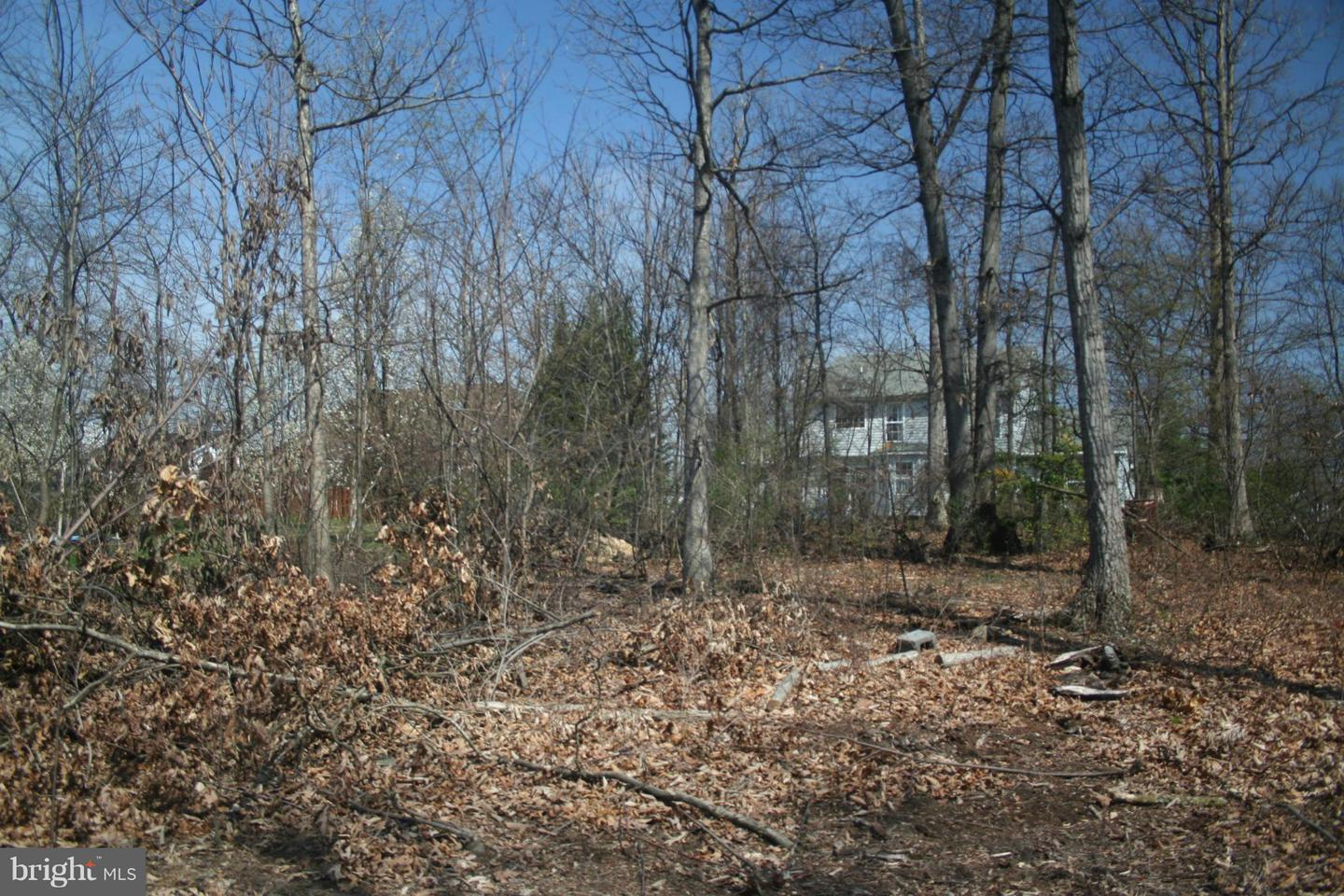 Additional photo for property listing at 1lot Mill Race Drive  Winchester, Virginia 22602 United States