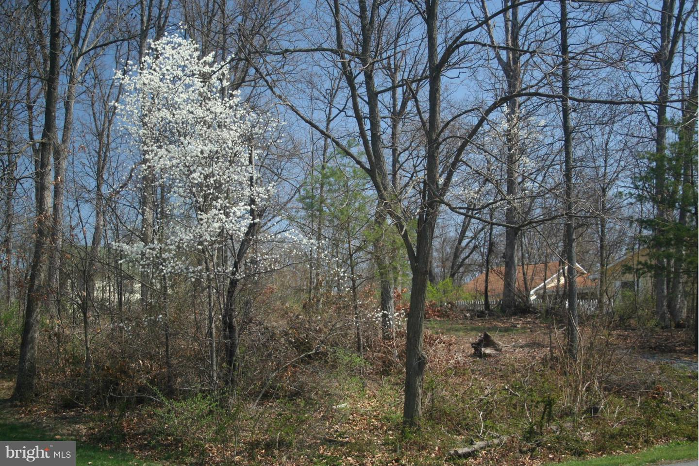 Land for Sale at 1lot Mill Race Drive Winchester, Virginia 22602 United States