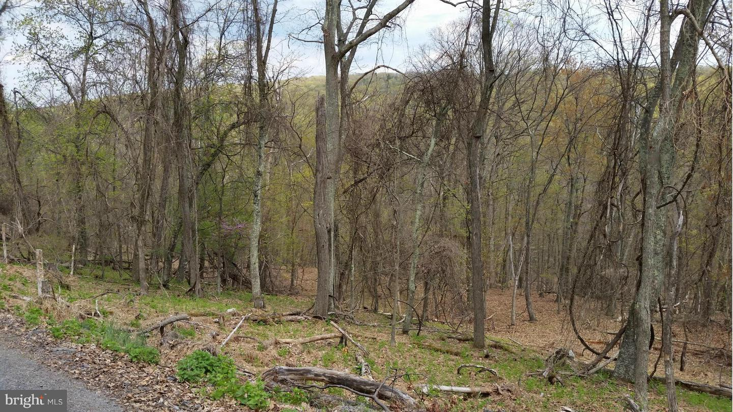 Additional photo for property listing at Katelyn Lane  Berkeley Springs, West Virginia 25411 United States