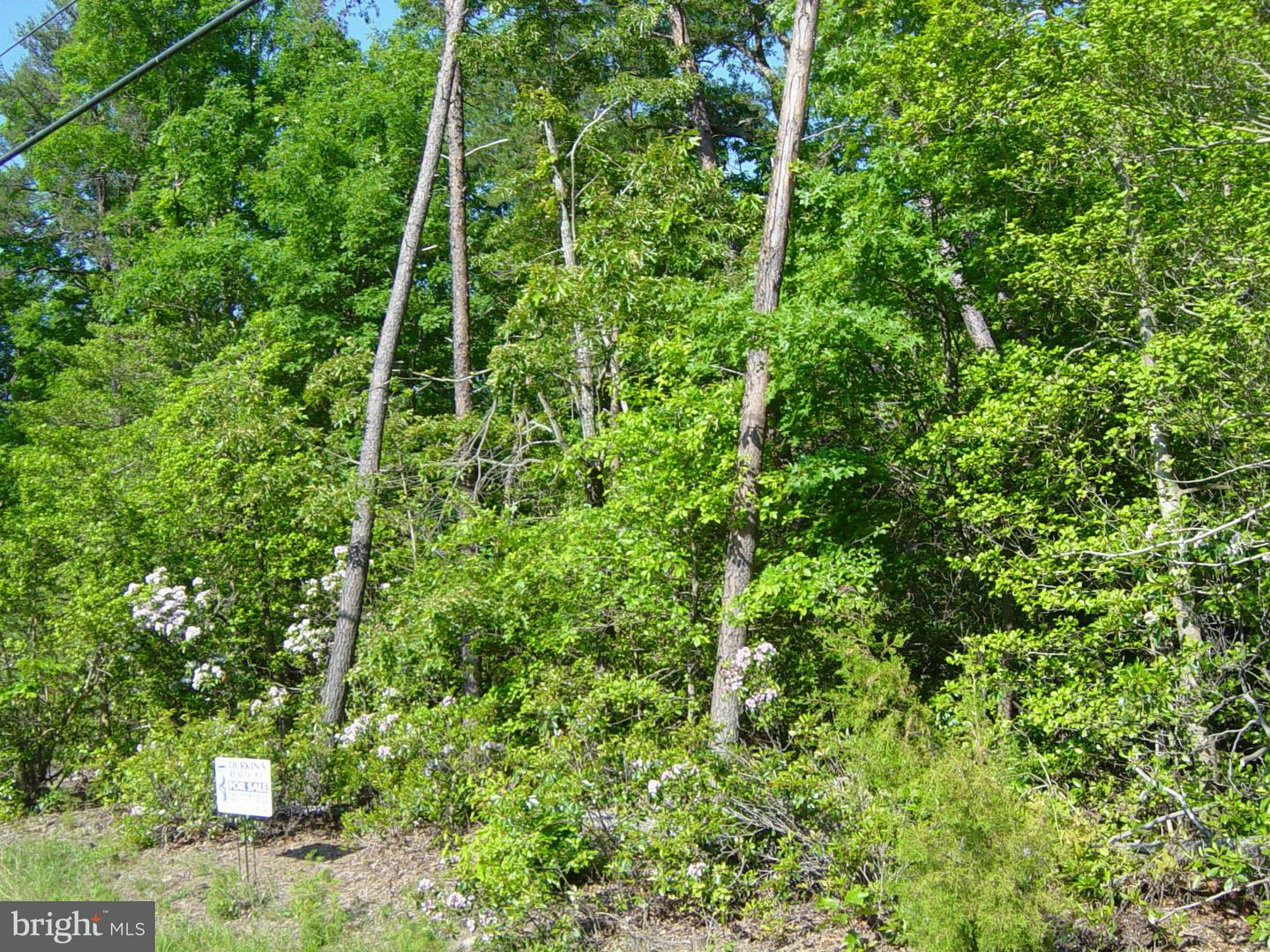 Land for Sale at Pegg Rd Lexington Park, Maryland 20653 United States