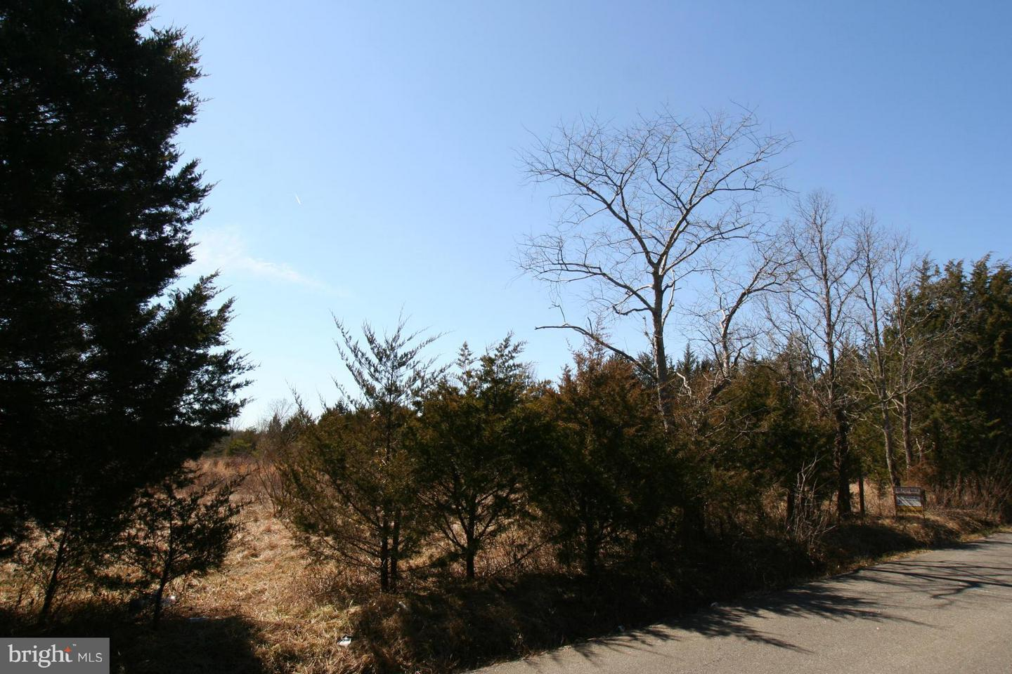 Land for Sale at 2 Sowego Rd Catlett, Virginia 20119 United States