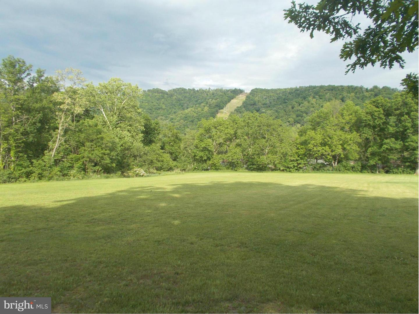 Additional photo for property listing at Tangle Wood Loop  New Creek, West Virginia 26743 United States