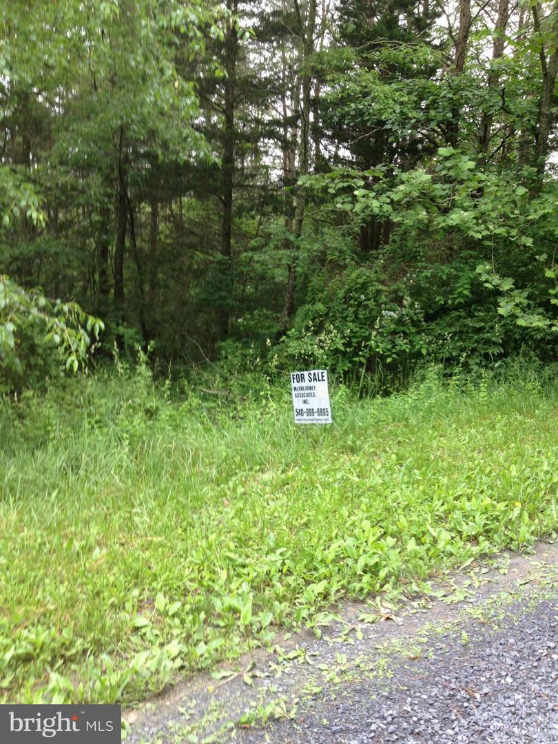 Additional photo for property listing at 0 Sandpiper Dr  Basye, Virginia 22810 United States