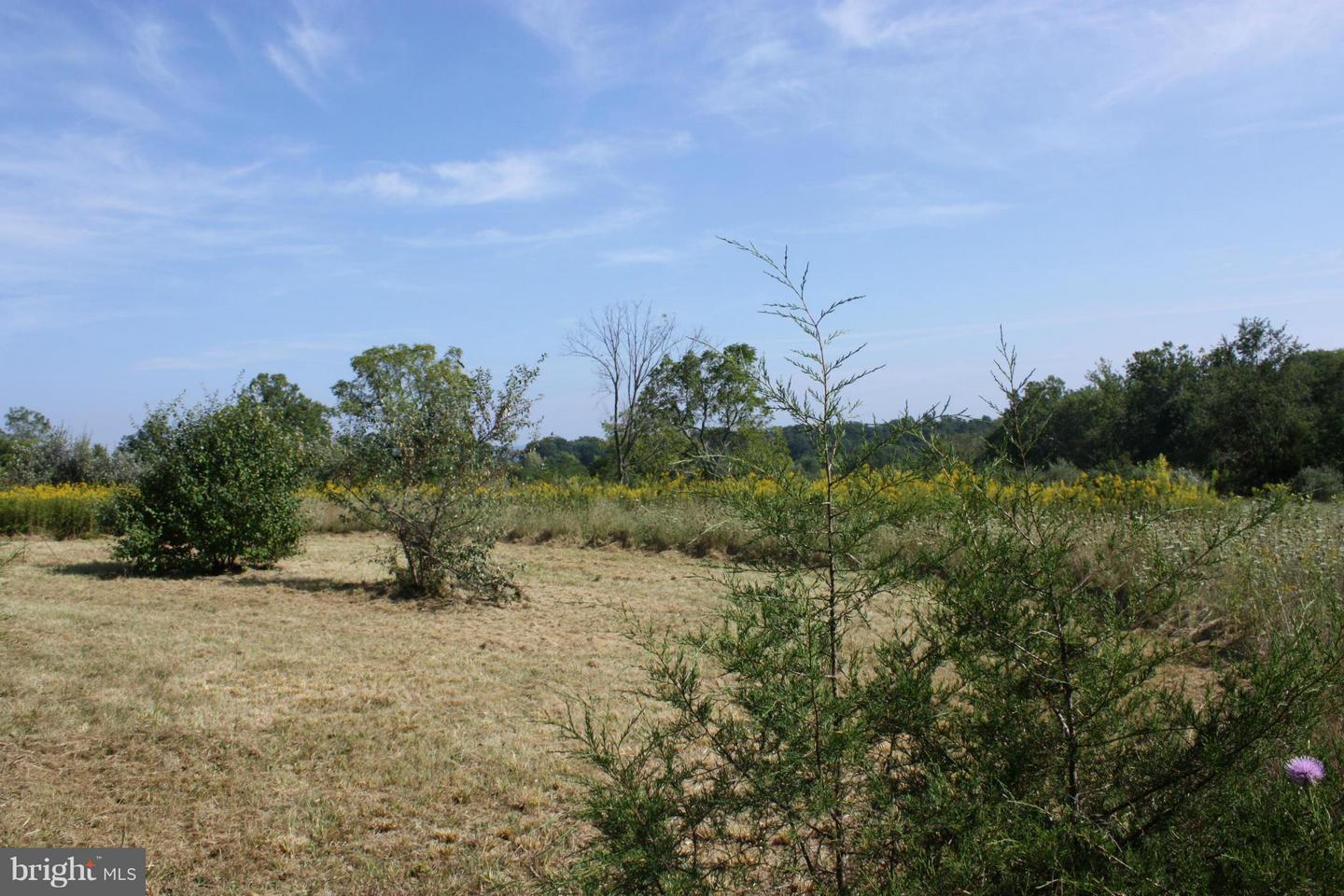 Additional photo for property listing at Bergen Drive Lot # 12  Maurertown, Virginia 22644 United States