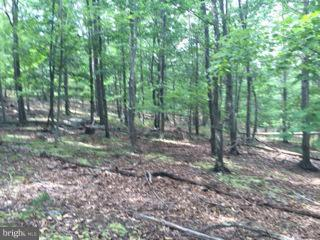 Land for Sale at Rt 220 /cCt oOf rRad Keyser, West Virginia 26726 United States