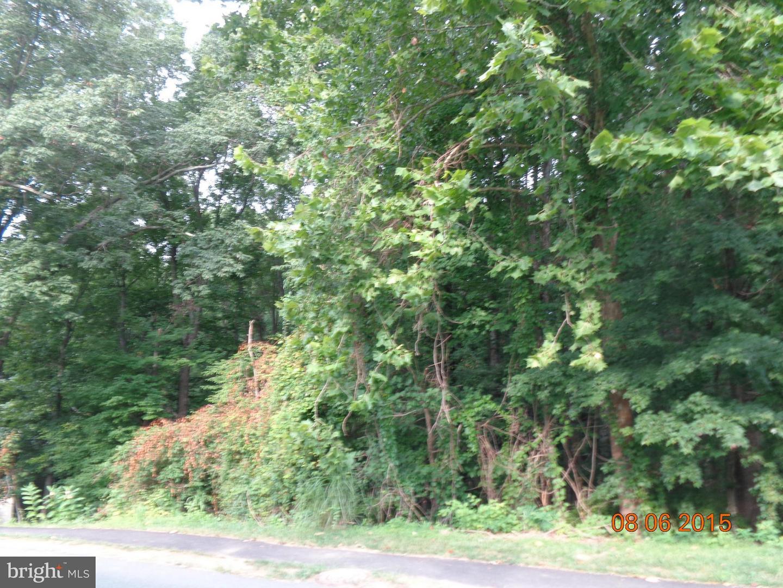 Land for Sale at 6714 Woodridge Rd New Market, Maryland 21774 United States