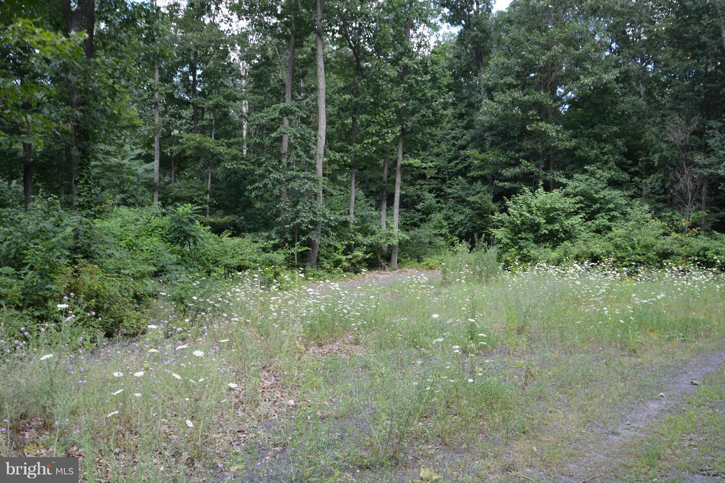 Additional photo for property listing at 0 Egolf Rd  Bedford, Pennsylvania 15522 United States