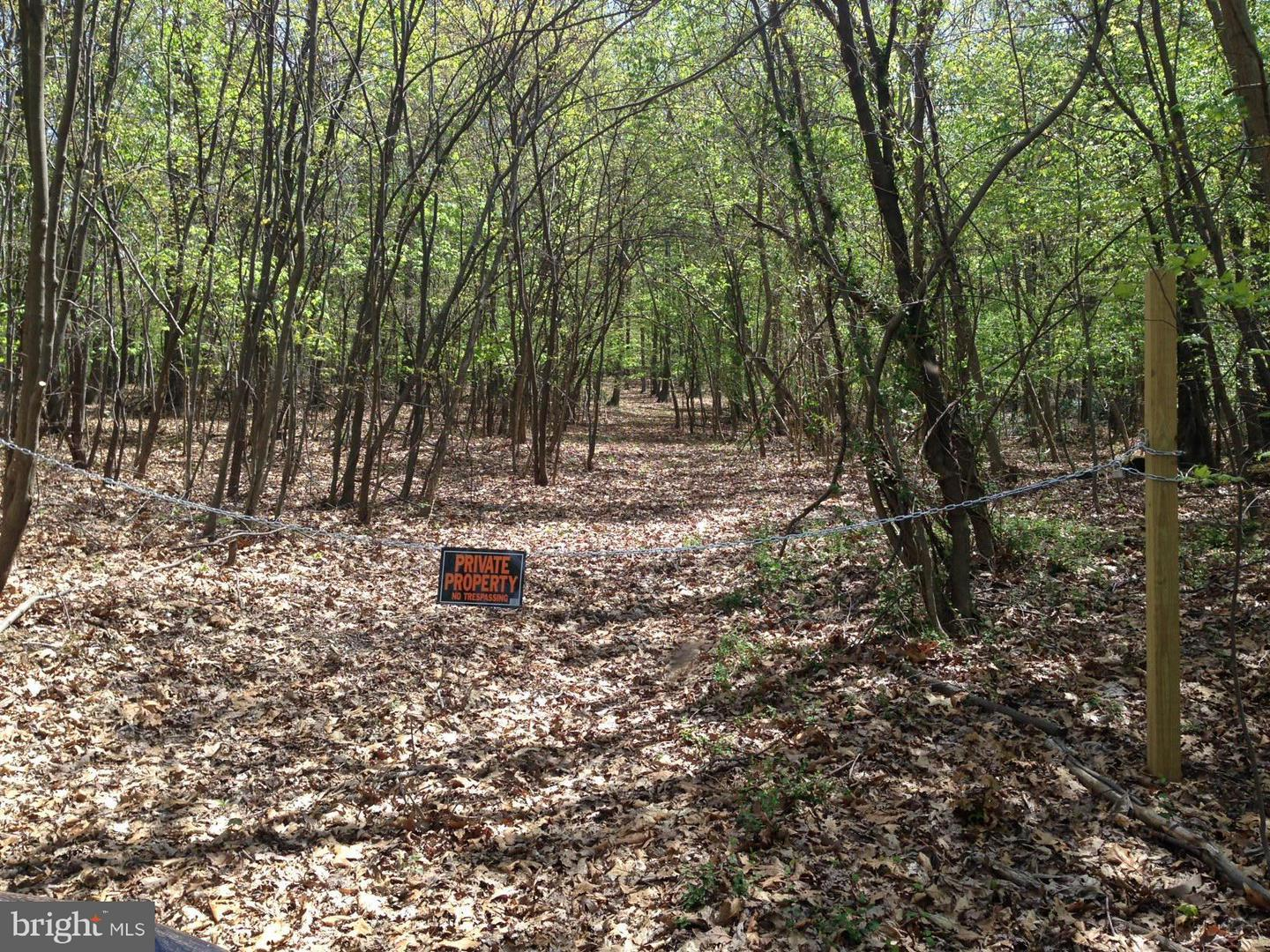 Land for Sale at -Parcel 44 Hoffmaster Rd Knoxville, Maryland 21758 United States