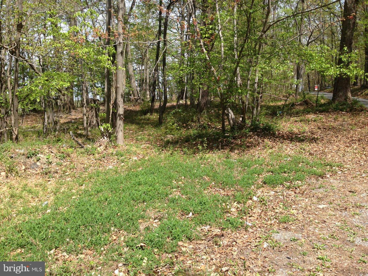 Additional photo for property listing at -Parcel 44 Hoffmaster Rd Knoxville, Maryland 21758 United States