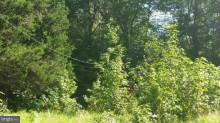 Additional photo for property listing at 19840 Piney Point Rd  Valley Lee, Maryland 20692 United States