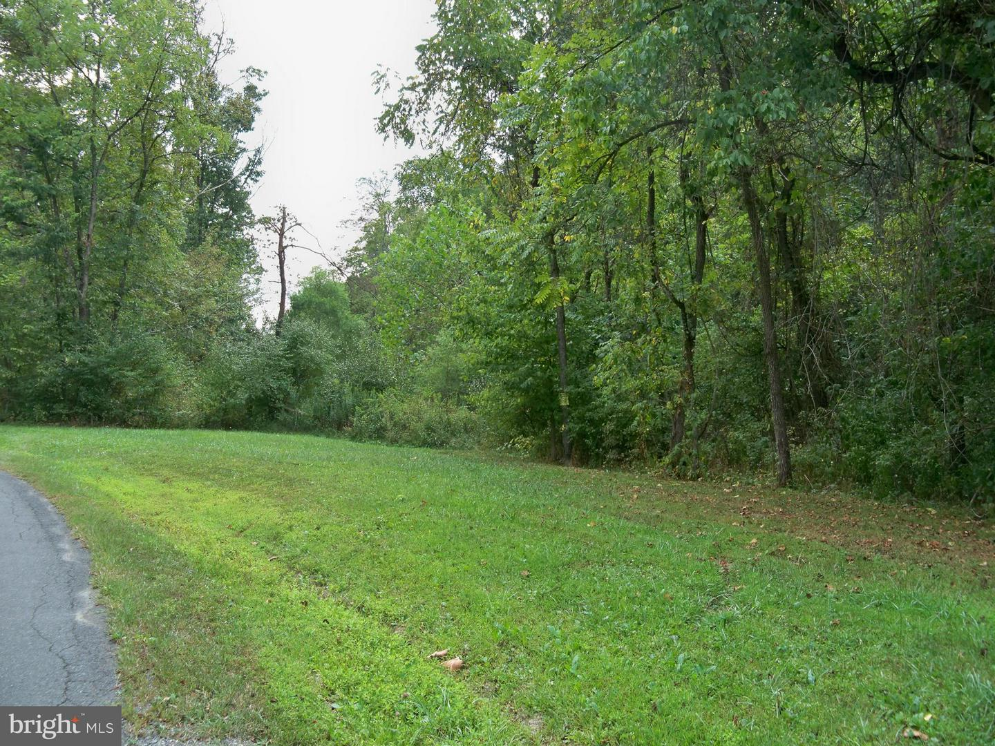Land for Sale at Three Run Rd Bunker Hill, West Virginia 25413 United States