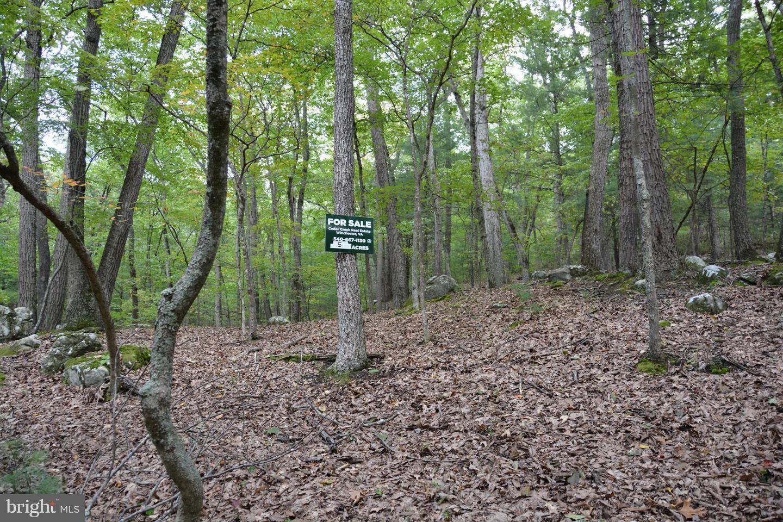 Additional photo for property listing at 123 Ambrogi Dr  Capon Bridge, West Virginia 26711 United States