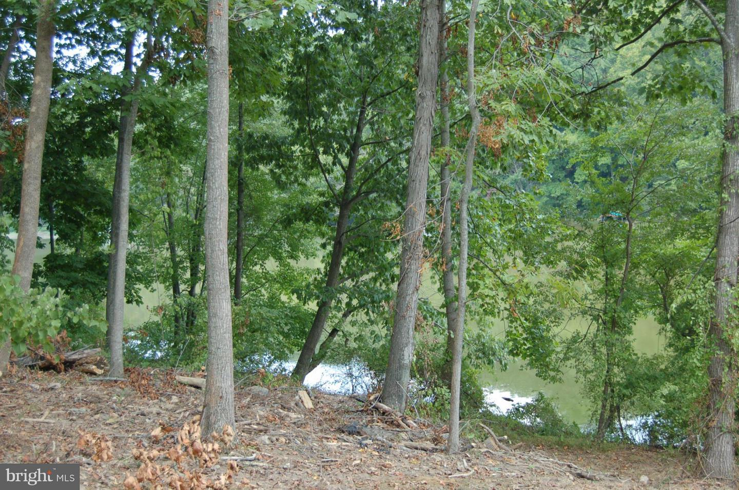 Additional photo for property listing at 6721 Balmoral Overlook Ct  New Market, Maryland 21774 United States