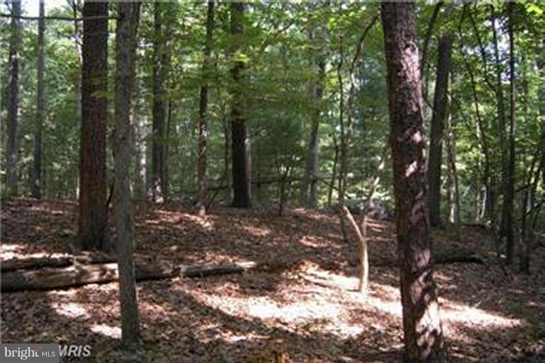 Land for Sale at 123 Ambrogi Dr Capon Bridge, West Virginia 26711 United States