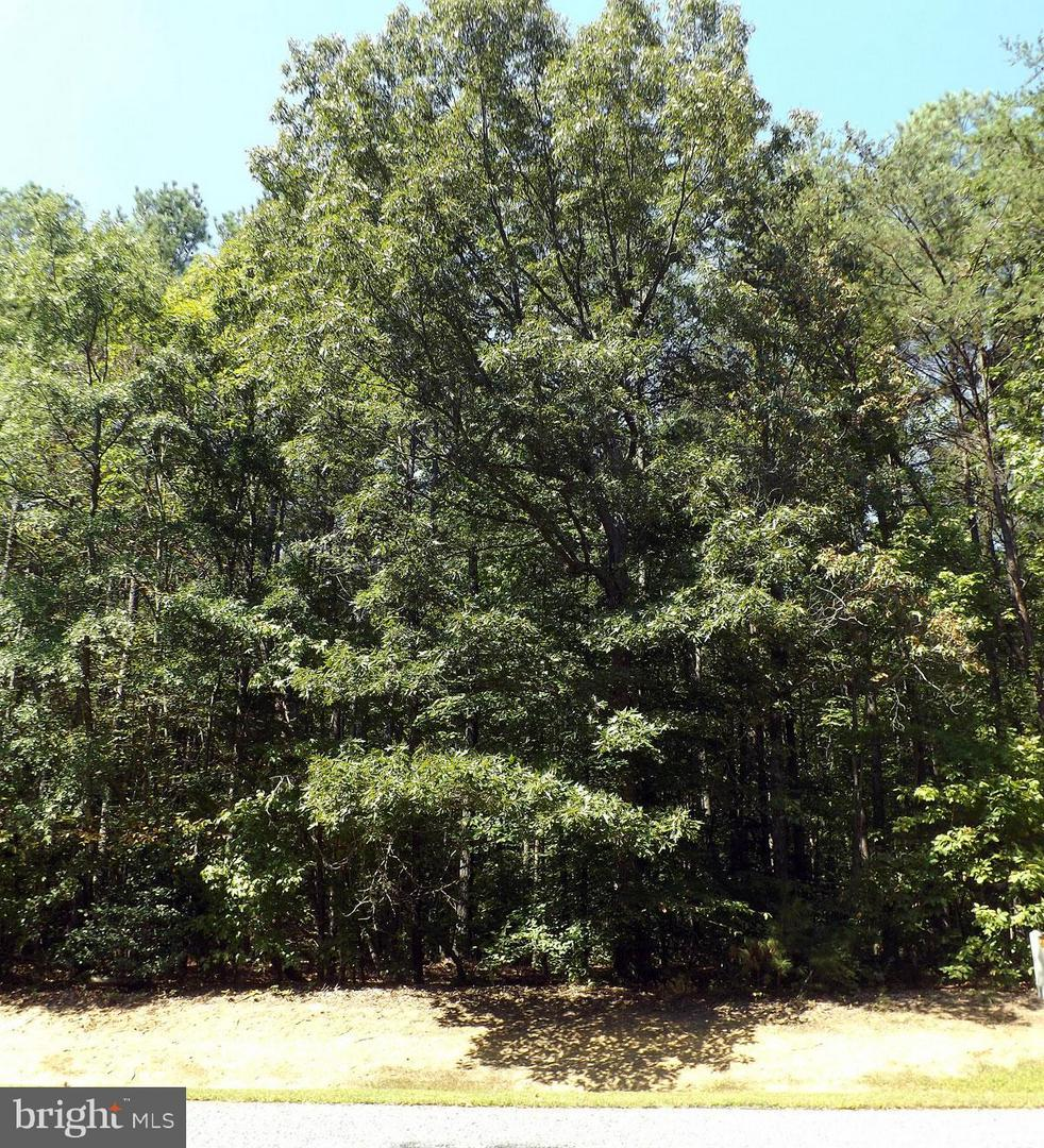 Land for Sale at Mineral, Virginia 23117 United States