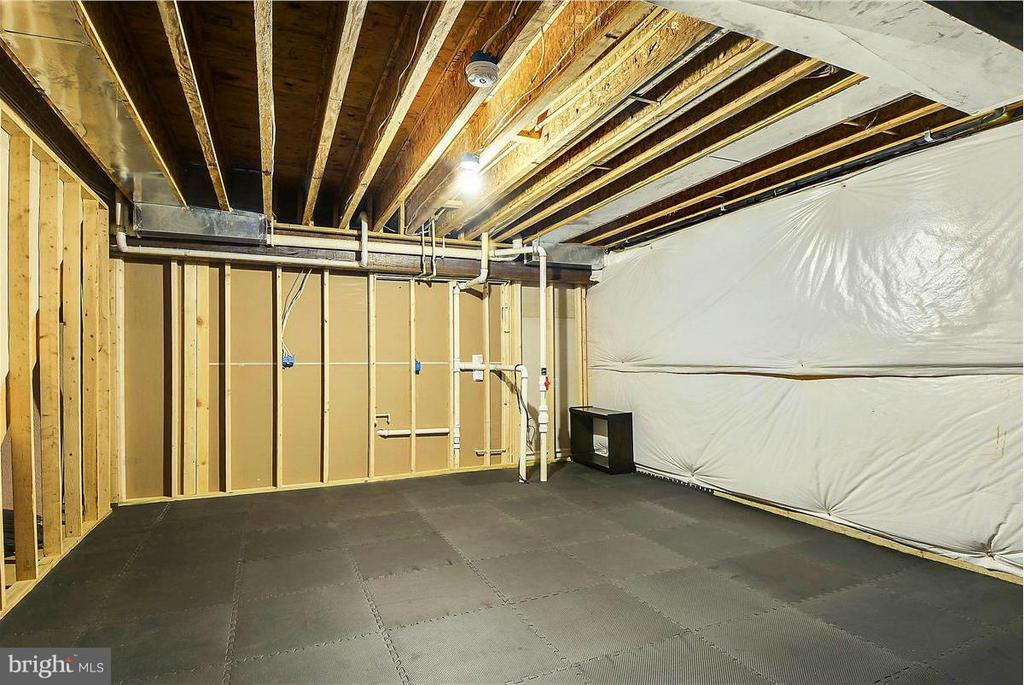 Large Storage Room in Lower Level - 1808 RIVER WATCH LN, ANNAPOLIS