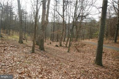 Land for Sale at Rio Hills Dr Rio, West Virginia 26755 United States