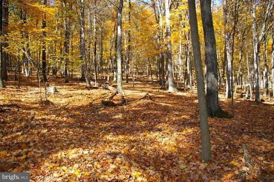 Land for Sale at 5 Woodpecker Dr Berkeley Springs, West Virginia 25411 United States