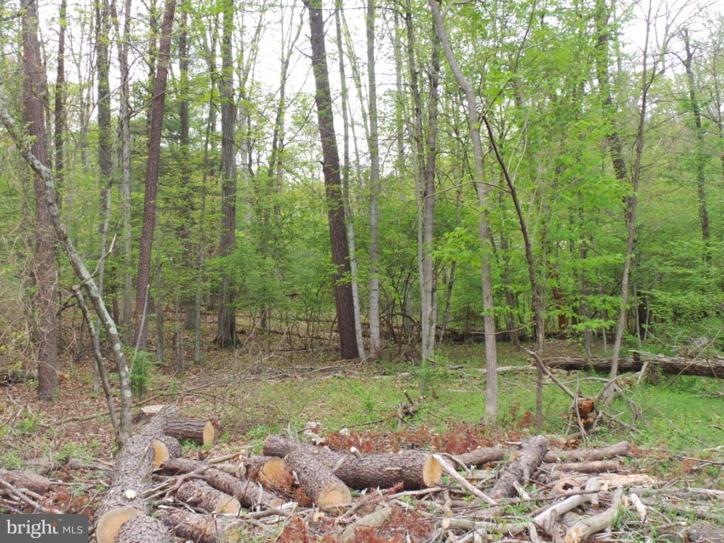 Land for Sale at 0 Creek Rd Berkeley Springs, West Virginia 25411 United States