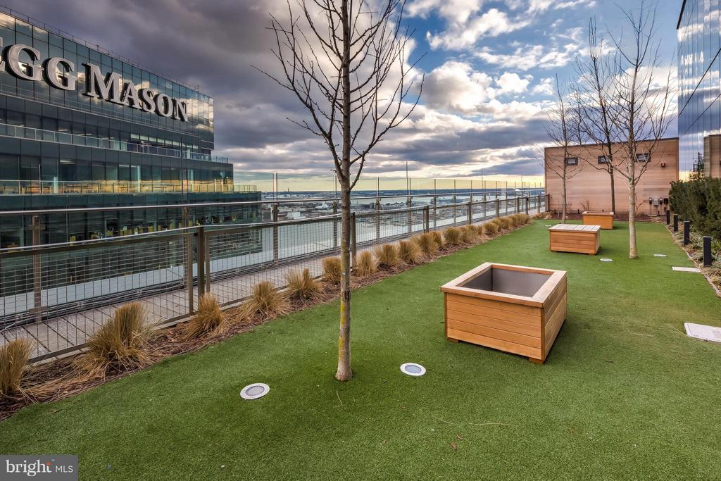 Private Rooftop Dog Park - 300 INTERNATIONAL DR #2701, BALTIMORE