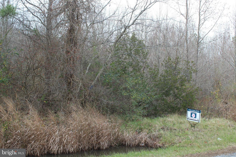 Land for Sale at White Marsh Rd Madison, Maryland 21648 United States