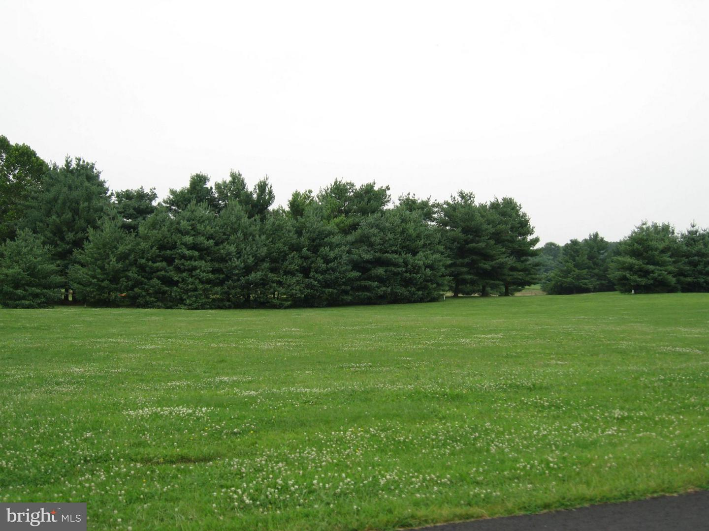 Land for Sale at Lot 21 Bowling View Rd Front Royal, Virginia 22630 United States