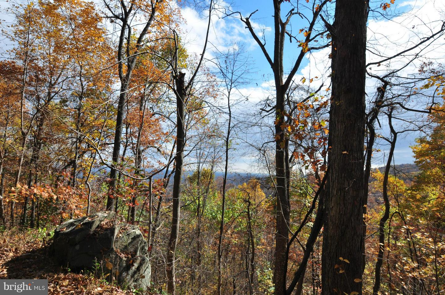 Land for Sale at Huntly, Virginia 22640 United States