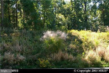 Land for Sale at Mathews Rd Bryans Road, Maryland 20616 United States