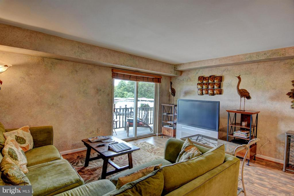 Family Room - 13705 ANNA POINT LN, MINERAL