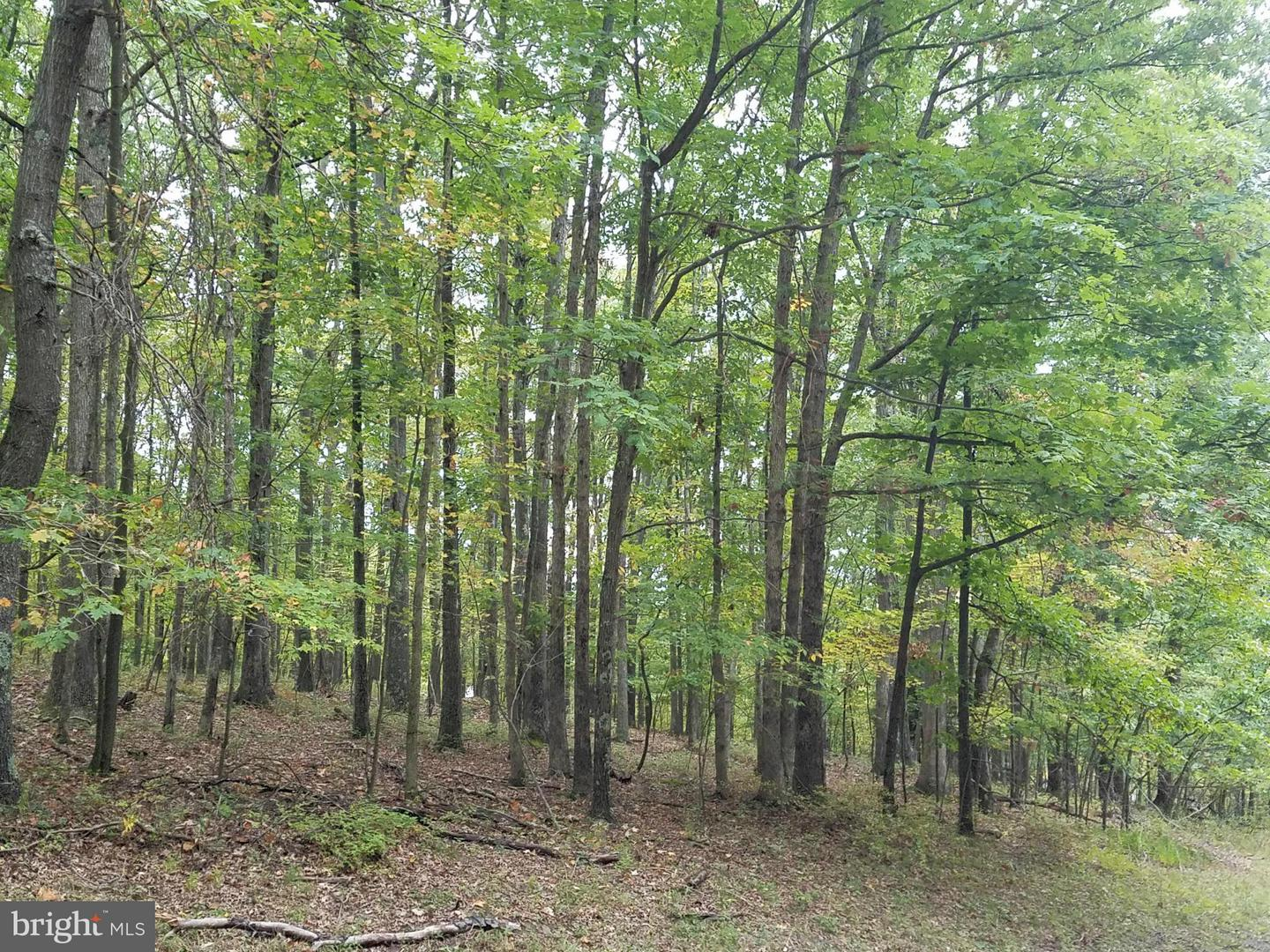 Land for Sale at 27 Royal Charlotte Rd Oakland, Maryland 21550 United States
