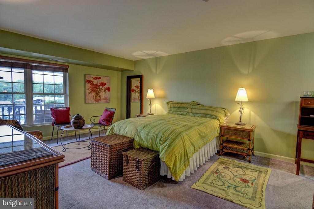 Bedroom (Master) - 13705 ANNA POINT LN, MINERAL