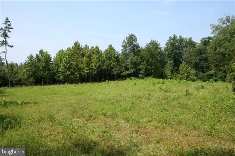 Photo of home for sale at 0 Orange Road, Madison VA