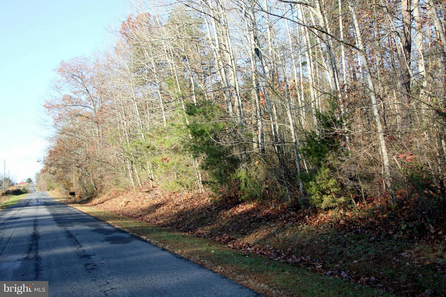 Land for Sale at 25-6h Tryme Rd Brightwood, Virginia 22715 United States