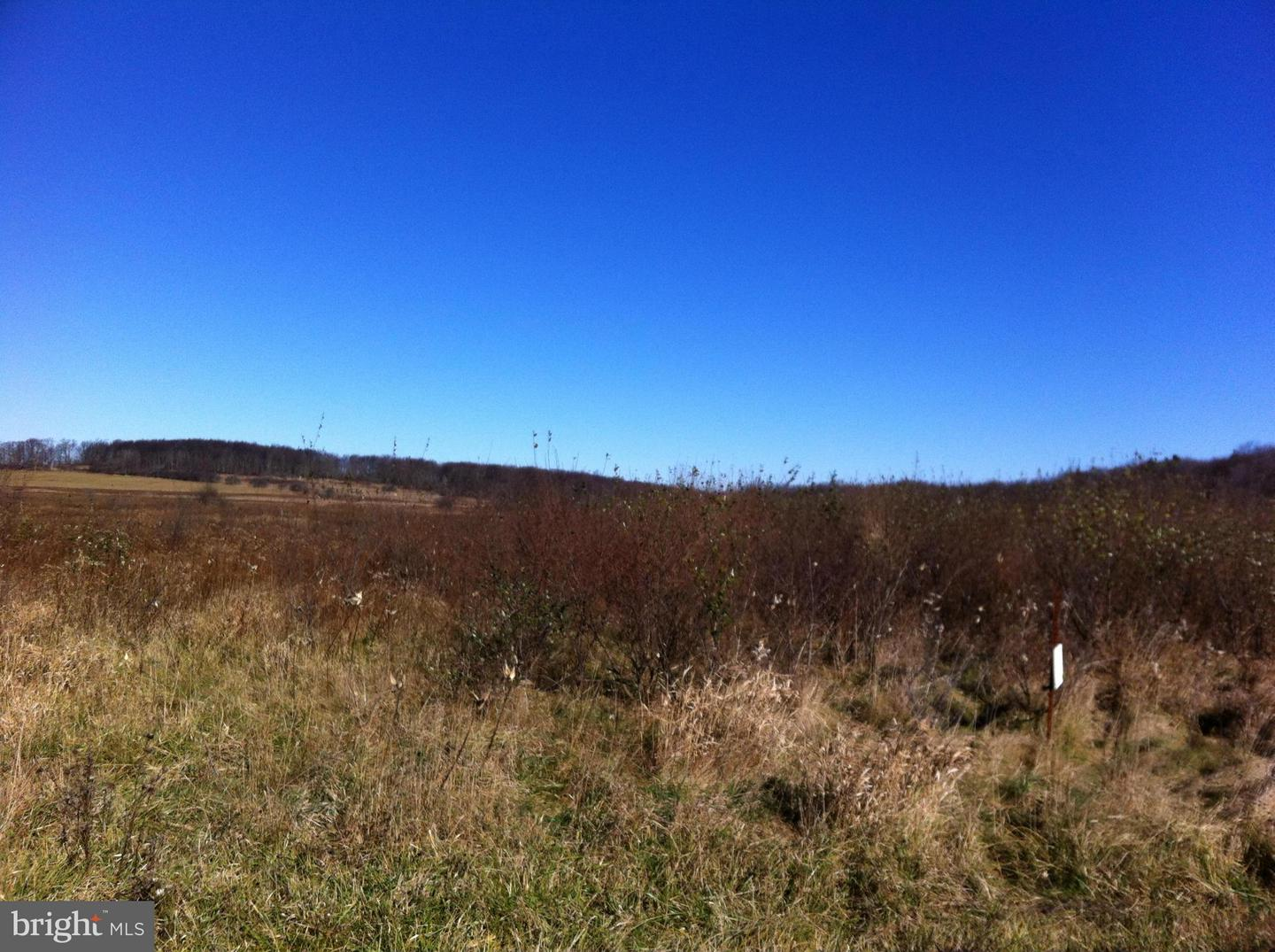 Land for Sale at Bismark Rd Mount Storm, West Virginia 26739 United States