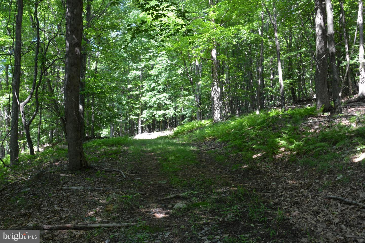 Land for Sale at Lot V Jacksonville Road Clearville, Pennsylvania 15535 United States